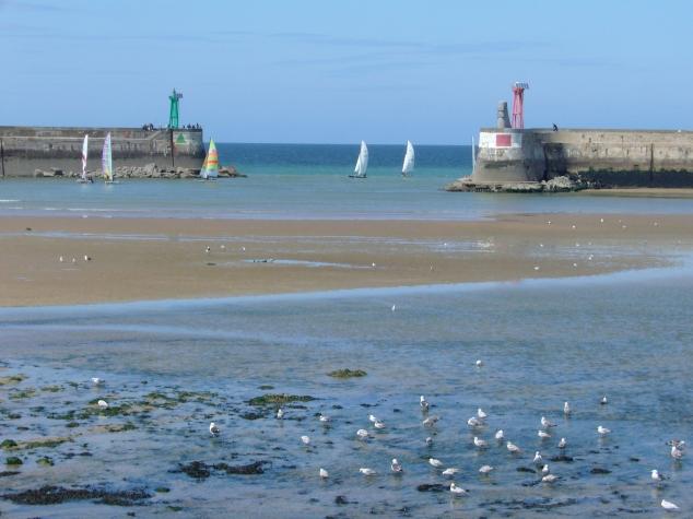 Retour au port à marée basse, le 20 mai 2009