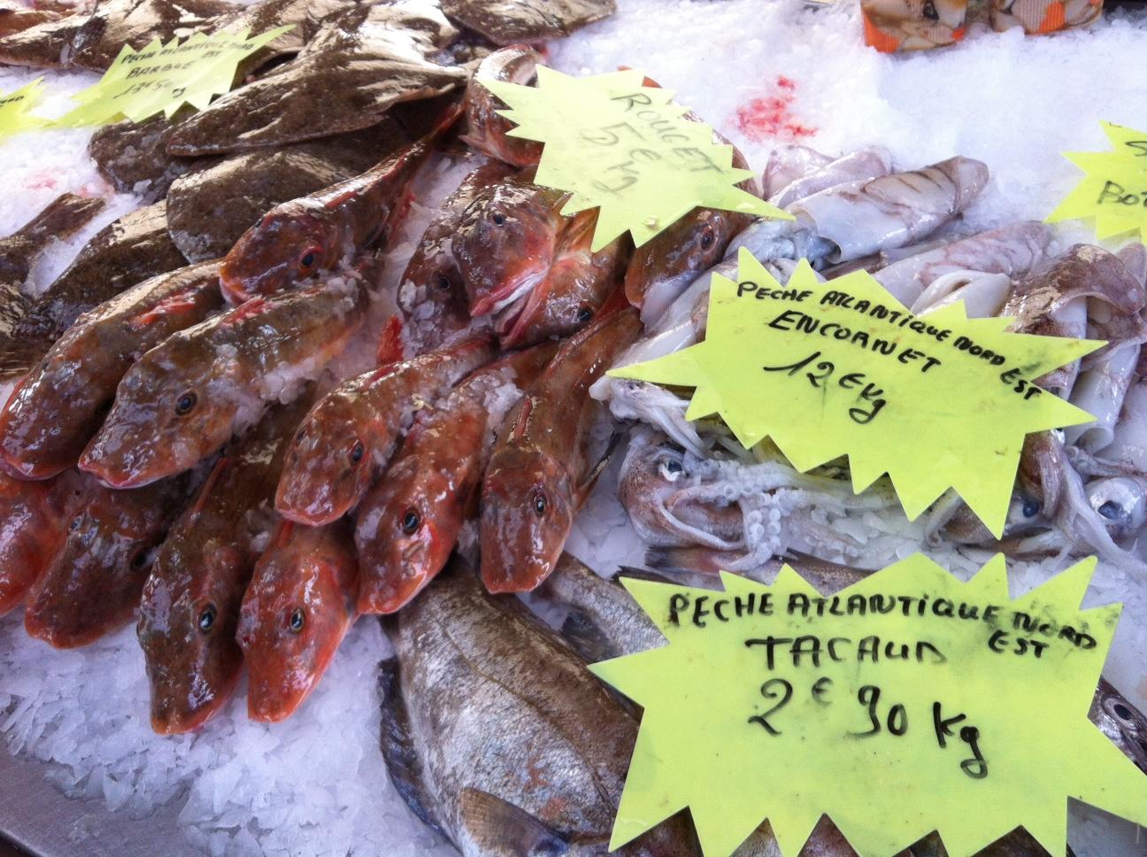 Cuisiner les poissons et coquillages de la p che bas - Cuisiner le homard vivant ...